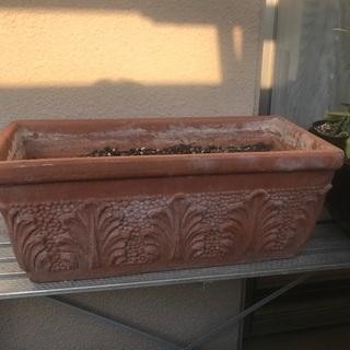 陶器製プランター