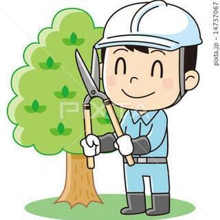 お庭の剪定いたします。お気軽にお問い合わせください。
