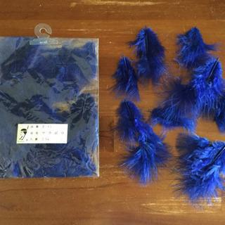 青色マラボウ(小)
