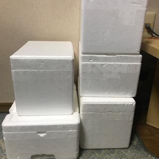 スチロール箱5箱