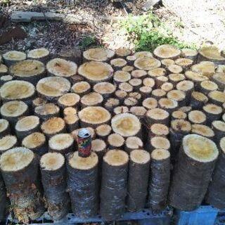 薪割りしたい方に!広葉樹ヤマザクラの玉切り丸太。長さ29cm程度...