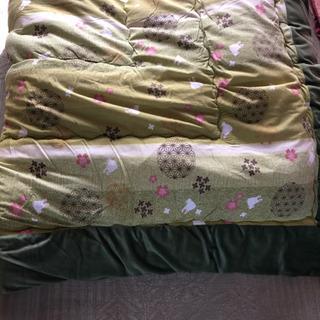 コタツ 布団 キレイです