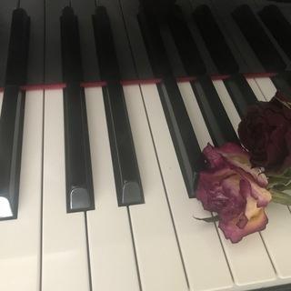 大人のためのピアノレッスン♪