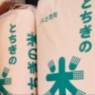 【新米】玄米