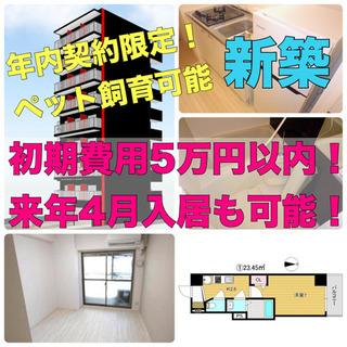 ⭐️新築初期費用5万❗️来年入居可能⭐️