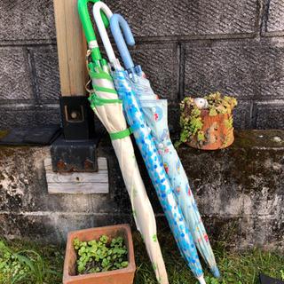 ジュニア雨傘 三本セット