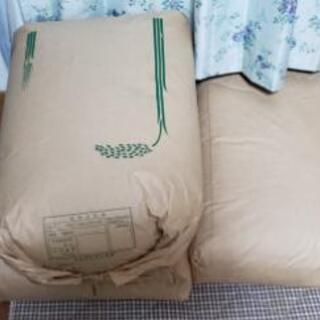 限定三袋!古米2018年度のコシヒカリの玄米になります!