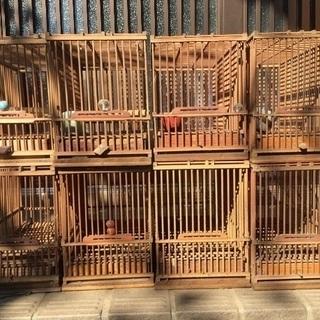 竹かご鳥用