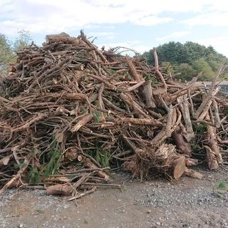 薪ストーブ、燃料資材等にどうぞ★0円無料です。★生木、枝、木の根★
