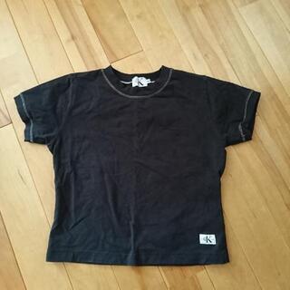 カルバン・クライン Tシャツ