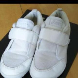 アシックス 上靴 19