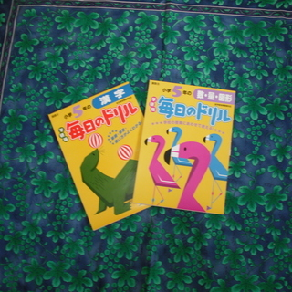 5年生ドリル漢字算数2冊で250円