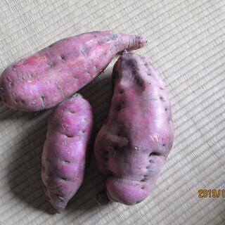 サツマイモ(ベニアズマ)3キロ
