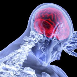 ストレスや加齢で傷ついた脳を回復させる方法