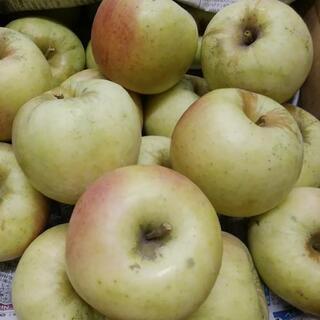 今注目のりんご「ぐんま名月」お得におためし♪1kg150円【特別栽培】