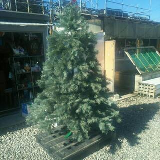 アメリカ製クリスマスツリー