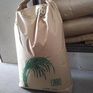 値下げ‼️ 令和元年度  新米(玄米) キヌヒカリ 30キロ