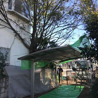 樹木 植木 庭木  雑木林 処分