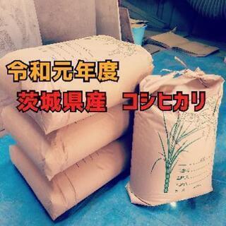 【新米】令和元年度 茨城県産 コシヒカリ 30kg