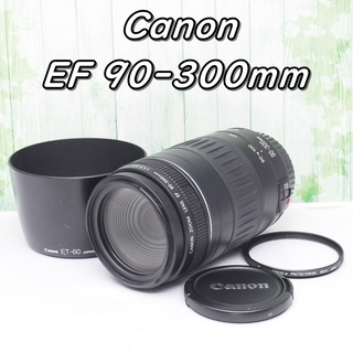 Canon Zoom LENS EF 90-300mm 4.5-5.6