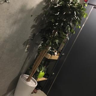 観葉植物 造花 セラミック?ホーロー?鉢
