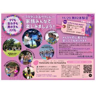 江戸川区 東葛西 🌺フラダンス 新規入門クラス開講のご案内🌺