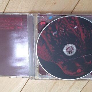 UVERworld BABY BORN&GO/KINJITO 初回限定盤DVD付 - 本/CD/DVD