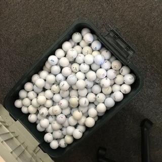 ゴルフボール 1箱 1000円