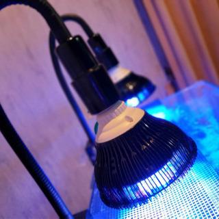 新品未使用 LED電球 LEDライト 54W  E26 E27 ...