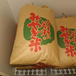 令和元年宮城県産コシヒカリです