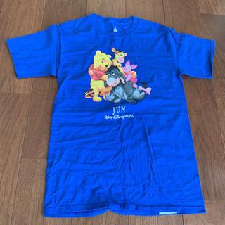 フロリダ DisneyParksで購入☆ ディズニーTシャツ