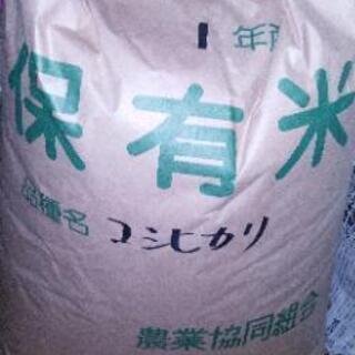 新米コシヒカリ一等米30キロ