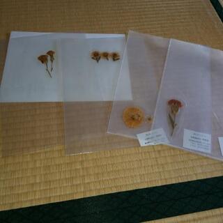 押し花のファイル(新品3含む)