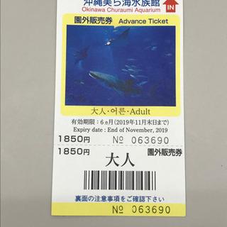沖縄美ら海水族館の大人用チケット 値段交渉ok