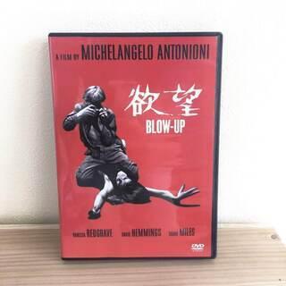 欲望 BLOW-UP DVD