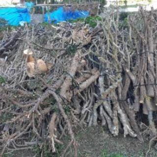 枝 角材  薪にいかがですか?