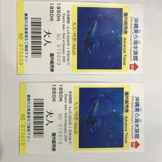 【2枚で】沖縄美ら海水族館のチケット大人用
