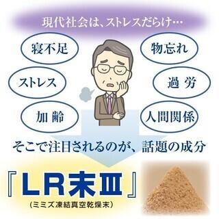 ブルートミミルンLR-III EX 主成分のLR末IIIは36年間ミミズ食品の研究と製造をし続け、ミミズ粉末の凍結真空乾燥 − 福岡県