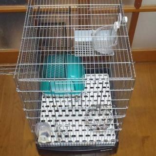 リス、デグー等小型哺乳類飼育 基本セット
