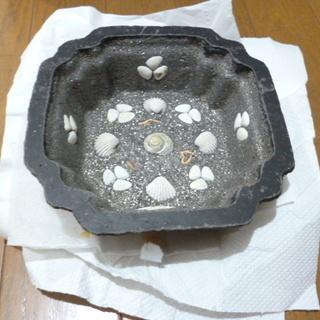 貝殻を貼り付けたお皿1枚(たぶん未使用)