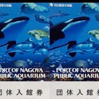 名古屋港水族館  チケット
