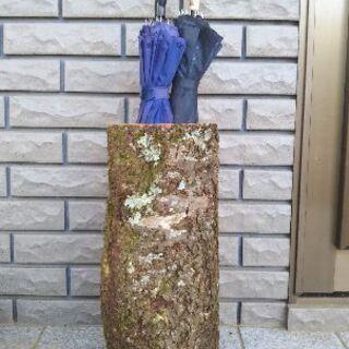 丸太(ヤマザクラ)の傘立て!茨城県潮来市。