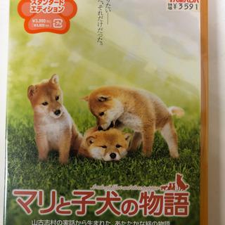 【新品未開封】DVD マリと子犬の物語