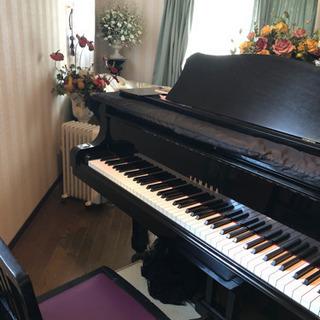 ピアノ教室 無料体験レッスン