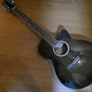 SepiaCrue セピアクルー アコースティックギター EAW...