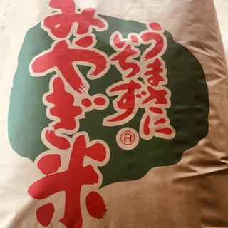 特殊農法☆ササニシキ☆令和元年