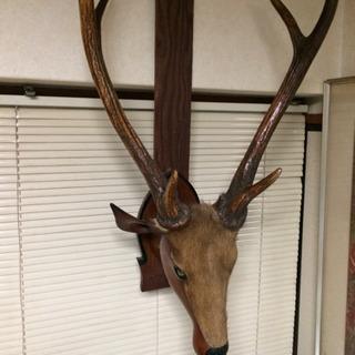 ‼️飾り物、鹿‼️剥製では有りません