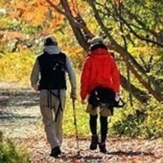 初割! 女性無料♪ 自然を満喫 等々力渓谷散策