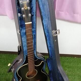 ギターとギターケース