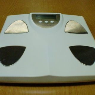 ELECTRONIC BODY FAT SCALE 体重計